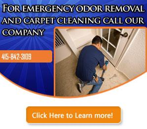Carpet Cleaning San Francisco Infographic